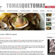 Blog Tomas Alonso (Larpeiros TVG)