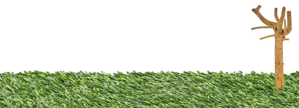 herbaArbore2