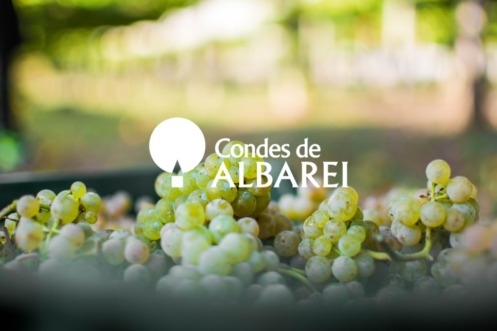 bodega condes de albarei
